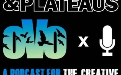 Peaks, Valleys & Plateaus Podcast Interview